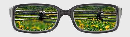 Conventinoal Bifocals 450x130